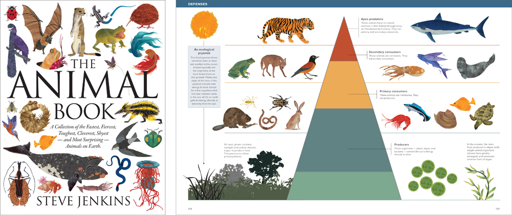 the-animal-book-eco-pyramid-e