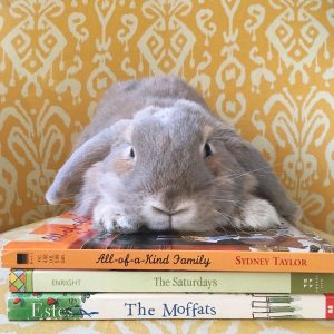 Our rabbit, Izzy, loves books too!