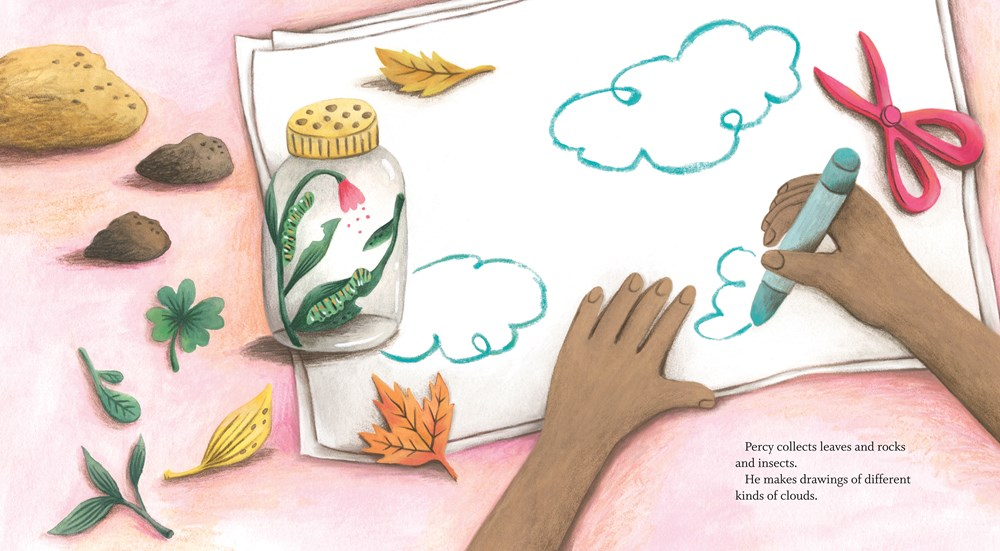 An interior image from Percy's Museum, written by Sara O'Leary and illustrated by Carmen Mok, showing a young boy's hands as he draws a nature scene with crayons.