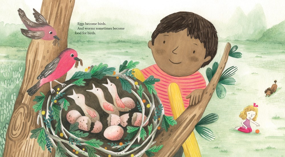 An interior image from Percy's Museum, written by Sara O'Leary and illustrated by Carmen Mok, showing a young boy with brown skin and hair admiring a birds' nest full of eggs in a tree.